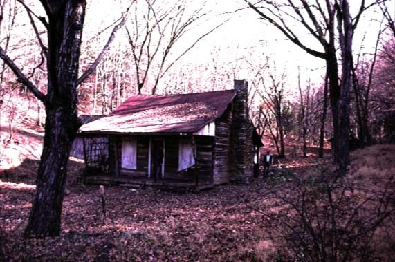 the-evil-dead-cabin12