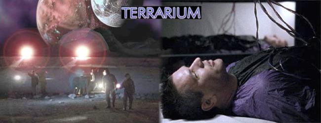 RevPicTerrarium