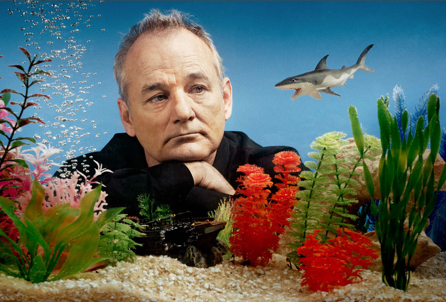 best bill murray movies