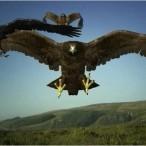 Birdemic (2010)