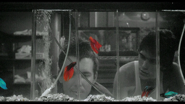 15 great movies that masterfully blend black white with for Rumble fish movie