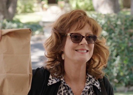 Susan Sarandon - The Meddler