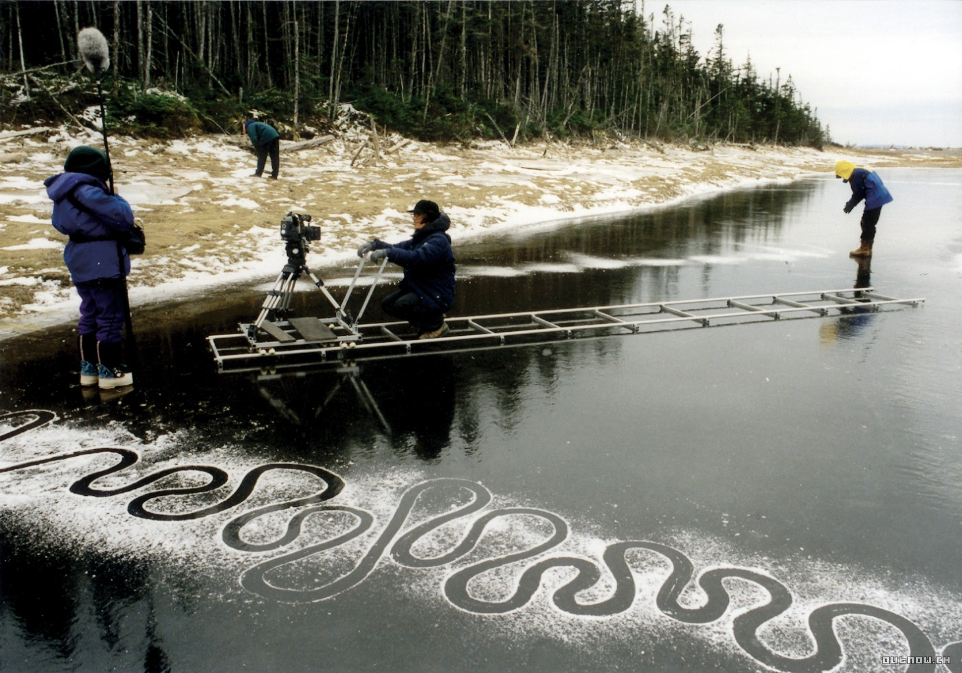 Rivers and Tides Andy Goldsworthy Working with Time (2001)
