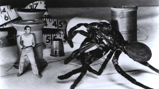 The Incredible Shrinking Man (1957)_