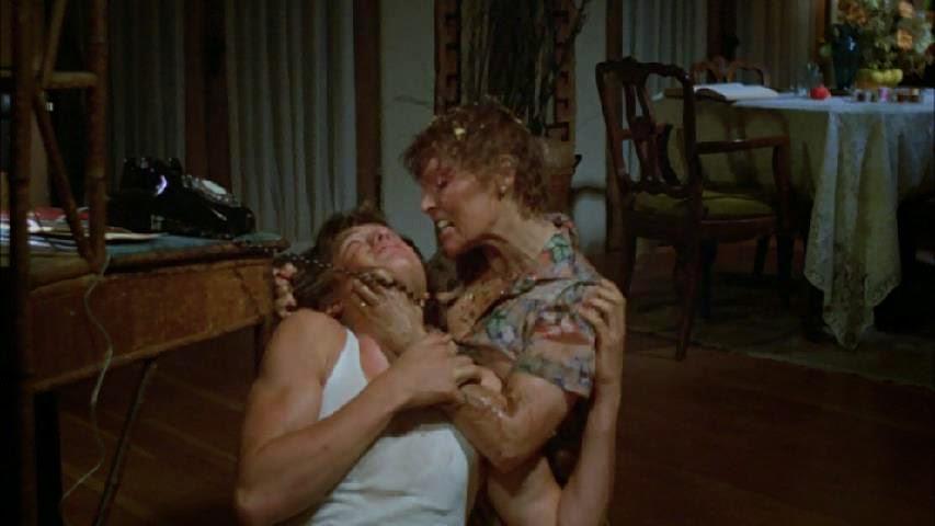 Butcher, Baker Nightmare Maker (1982)