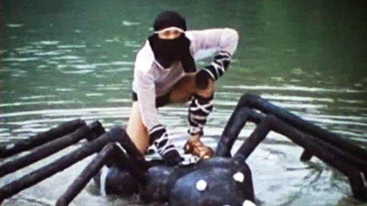 Ninja The Final Duel (1986)