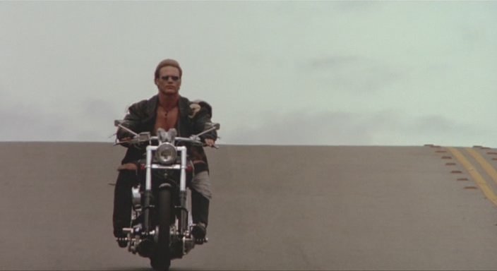 Stone Cold (1991)