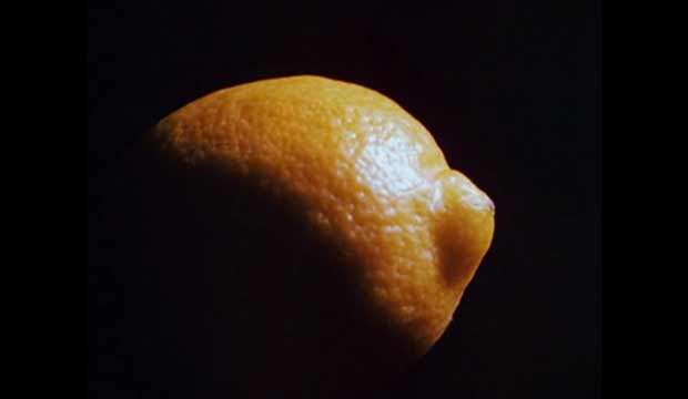 Lemon by Hollis Frampton