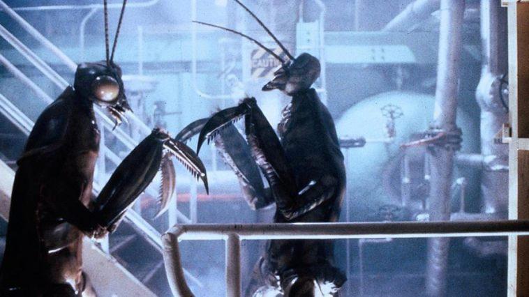 Meet the Applegates (1990)